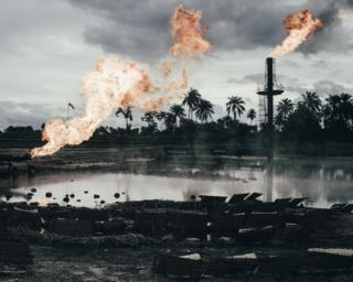 The wetlands of the Niger Delta