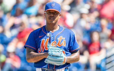 Mets' Marcus Stroman offers to coach Tampa ballplayers