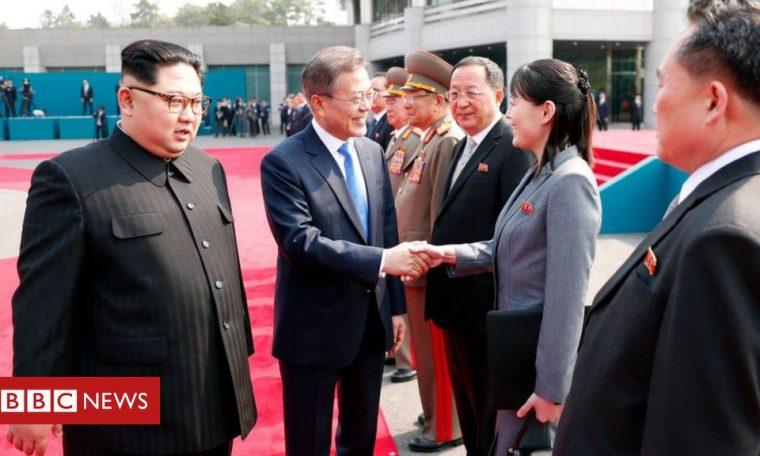 North Korea: Kim Jong-un 'suspends military action' against South