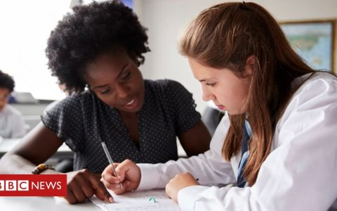 Summer catch-up plan for England's schools pledged