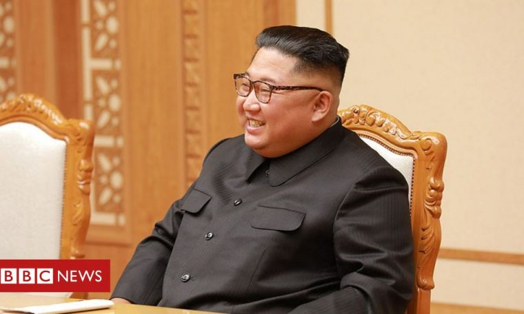 Coronavirus in North Korea: Kim Jong-un claims 'shining success'