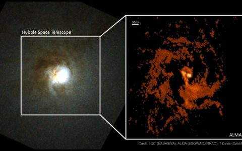 Where did the supermassive 'Mirach's Ghost' black hole come from?