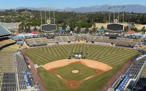 Max Muncy cites Dodgers' new center-field backdrop for HBP injury