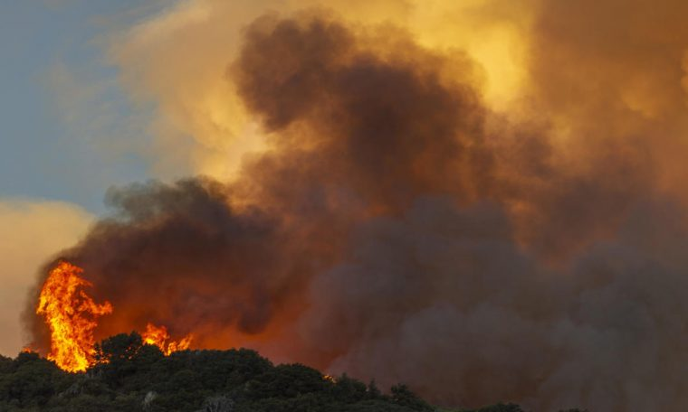 Apple Fire in California spreads to over 20,000 acres