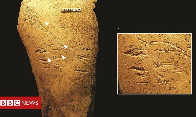 Europe's earliest bone tools found in Britain