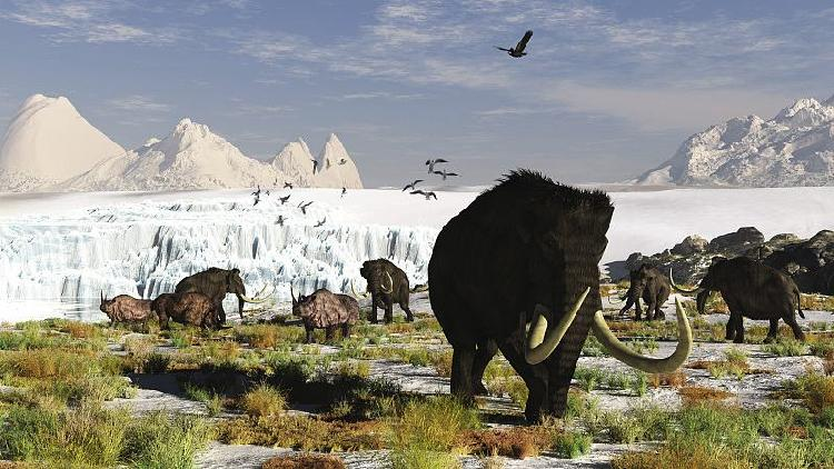 Scientists claim to have found how cold the last ice age was