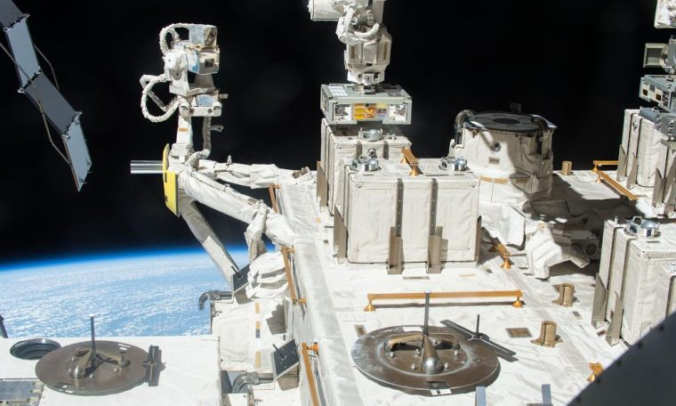 Bacteria from Earth can survive in space, study says