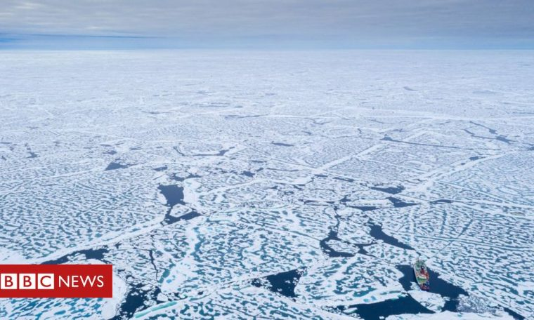 Arctic sea ice is shrinking to a record low