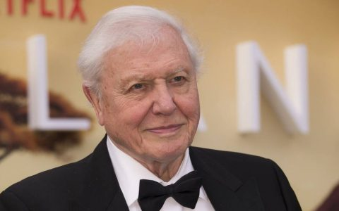 Sir David Attenborough broke world record with his Instagram account