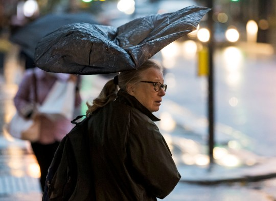 ?  London News Pictures licensed.  02/10/2020.  London, UK  Patri takes refuge under an umbrella, battling heavy rain and wind during a morning voyage to Ladbroke Grove in west London as Hurricane Alex brings up to 90 winds and heavy rains across much of the UK.  Photo credit: Ben Kathra / LNP