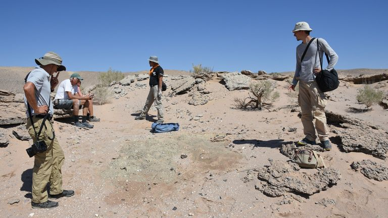 An unwanted handout photo of members of an Edinburgh-led university in Mongolia's Gobi Desert where they found several complete skeletons of a new species of toothless, two-fingered dinosaur called Oxoko Avsaran. The poles were about two meters long, with only two functional points on each forehead, and a large, toothless beak similar to the one seen in today's parrot.