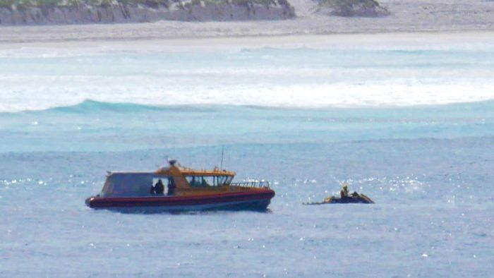 Esperance resumes search for shark attack victims on South Australia's south coast