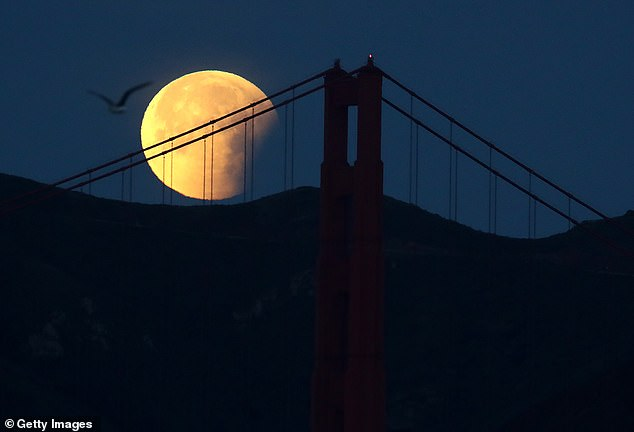 Legend has it that ghosts and spirits are more active on Halloween, but these demonic entities are not the only ones to appear on October 31 - a rare blue moon is also raised on the same day.  Pictured is a blue moon hanging in 2018 in San Francisco, California.