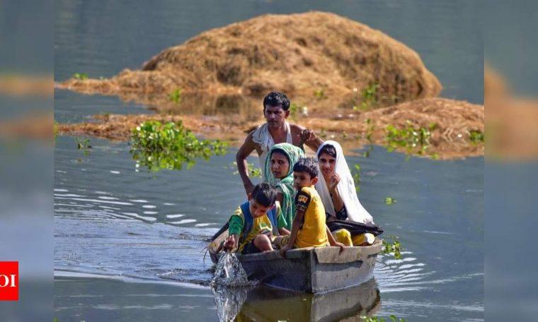 UN report: India third most devastated  India News