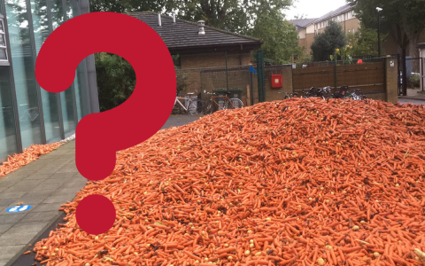 Why carrots were dropped at Goldsmiths University in London