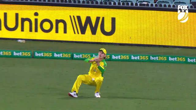 Zampa throws out the state!