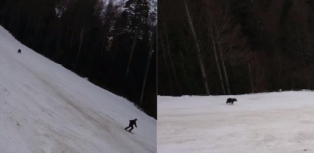 The skier is chased by a bear and survives the attack