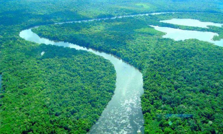 Brazil seeks help from America to fight deforestation in Amazon