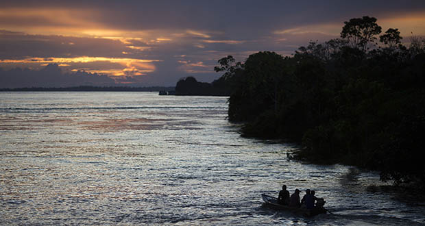 Investors warn Brazil of deforestation in Amazon