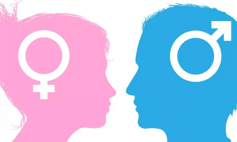 New York University suspended the student saying 'a man is a man, a woman is a woman'