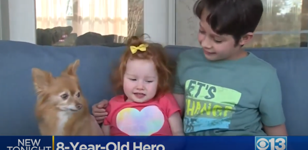 Boy saves 18-month-old sister from drowning with a tip she teaches