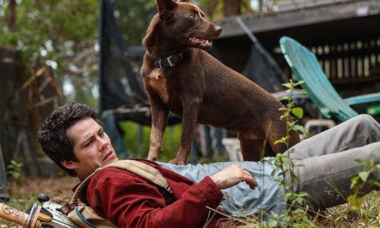 Dylan O'Brien appears in a good mood to explain his film on Netflix;  check out