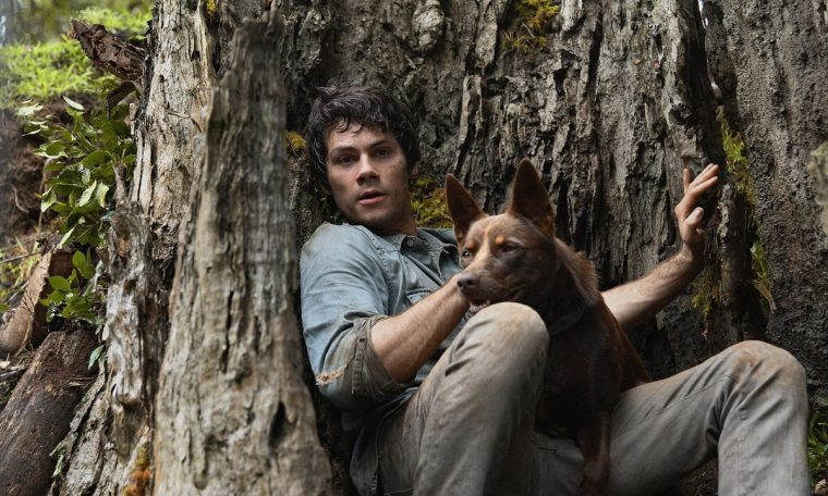 Love and Monsters: On the film Dylan O'Brien, on Netflix, Oscar Nominee gets an incredible trailer with bizarre creatures and astonishing journey;  come and see!