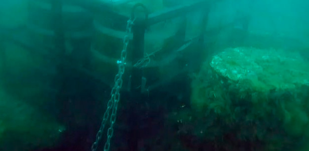 Thieves steal beer barrels to mature under the sea