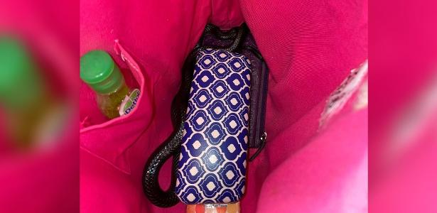Woman found highly poisonous snake in bag