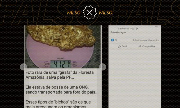 Photo shows gold found in Australia, not in Amazon