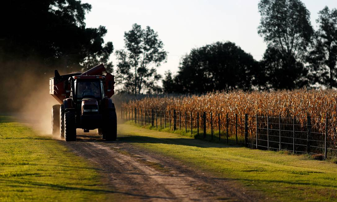 The tractor passes through a plantation in Chillivoy near Buenos Aires in April 2020;  Rural producers slash food prices, protesting Alberto Fernandez's decision to ban corn exports for two months