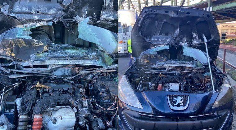 Ratos são suspeitos de provocarem incêndio em motor de carro