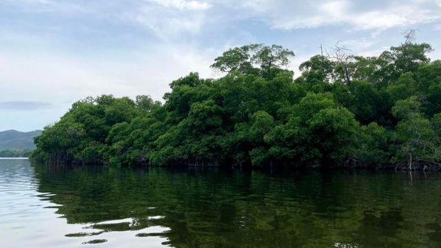 Lagoon in Puerto Escondido