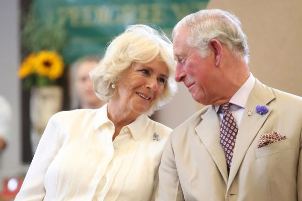 That secret phone call with Camilla that upset Prince Charles today