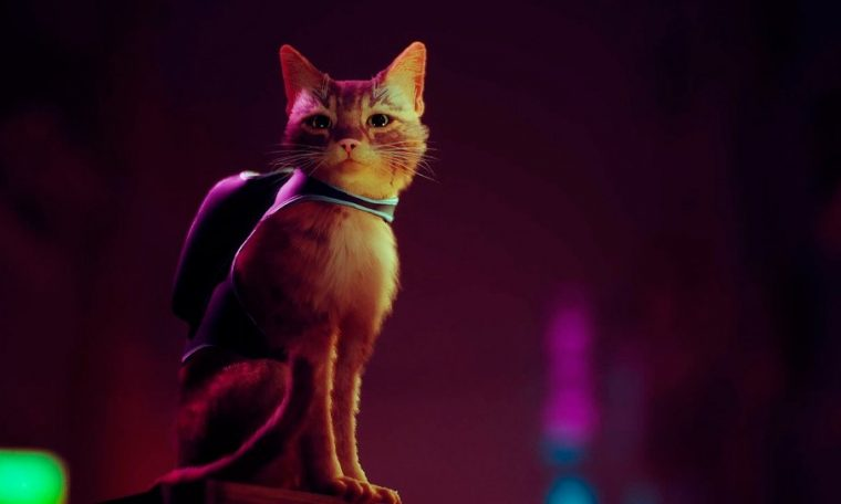 Maverick: The Game That Puts You in a Cat's Skin Wins Gameplay and Coming in 2022