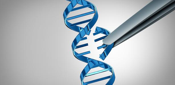 WHO wants to avoid divergence in the manipulation of the human genome