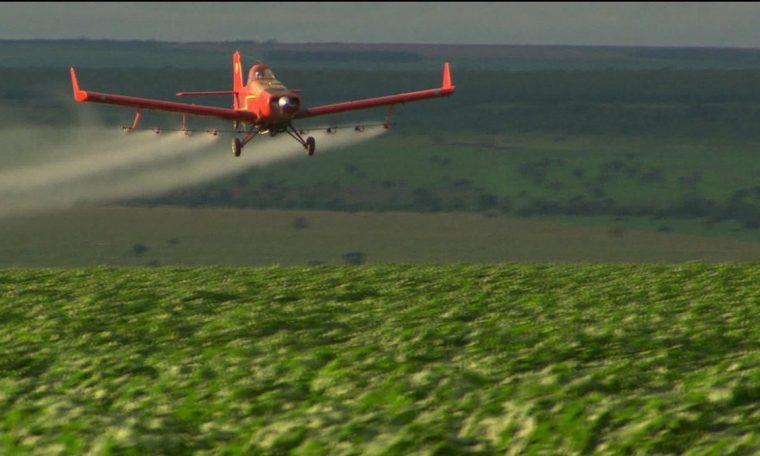 Biden bans pesticides for use in children linked to neurological damage  agribusiness
