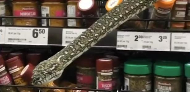 The 3-meter snake surprised the customers by coming on the shelf;  Watch