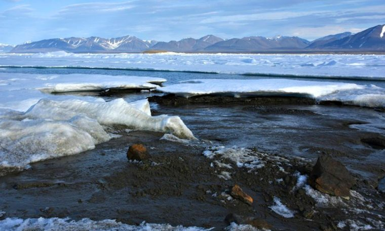 World's northernmost island discovered in Arctic by scientific expedition