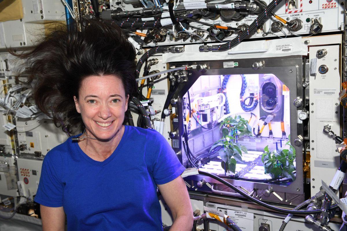 NASA Astronauts: Pepper Plants Bloom in Space #2