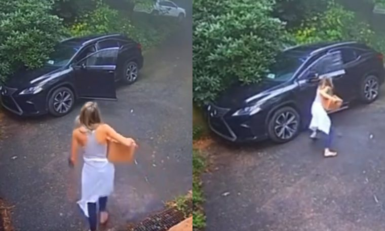 """A woman finds an unusual """"surprise"""" inside the car, gets very scared and the video of the moment goes viral;  Watch."""
