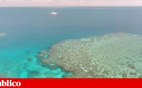Could artificial clouds help Australia's Great Barrier Reef?  |  Climate